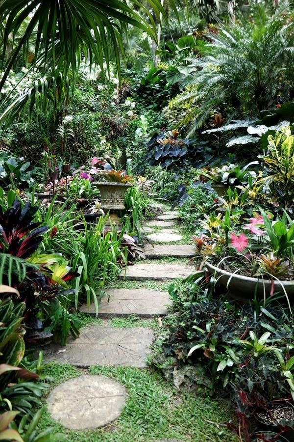 Стартовые площадки на саде Барбадос Huntes стоковая фотография