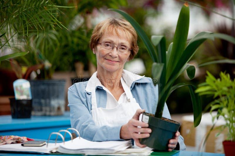 старшая деятельность женщины стоковая фотография rf