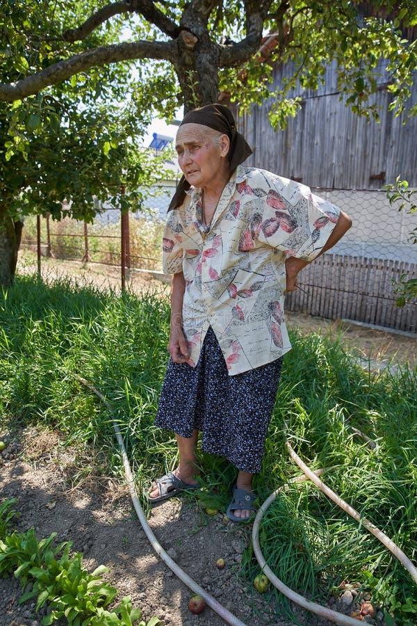 Старшая женщина в огороде стоковое изображение