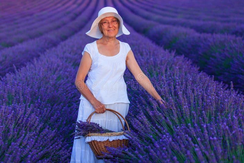 Старшая женщина в полях lavander стоковая фотография rf