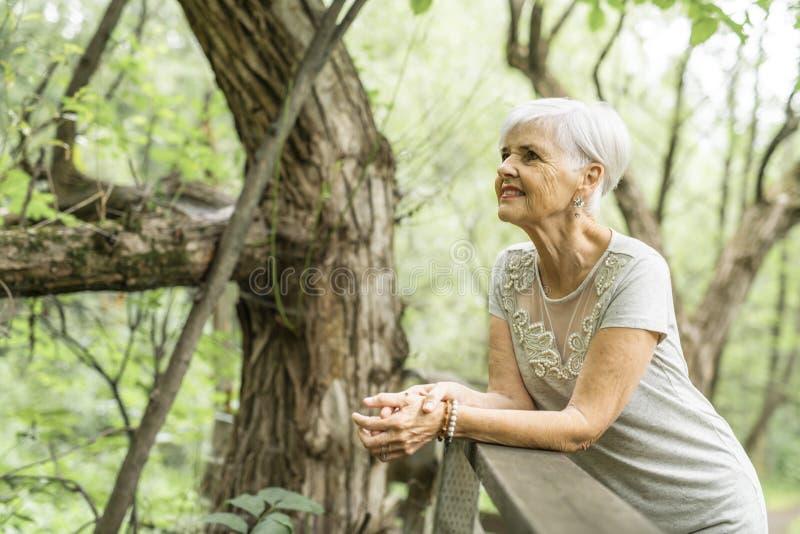 Старшая женщина в славном Forest Park стоковые изображения rf