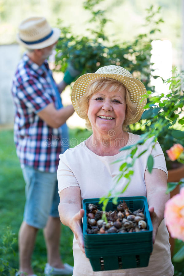 Vancouver Iranian Seniors Singles Dating Online Service