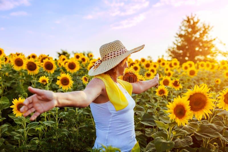 Старшая женщина идя в зацветая поле солнцецвета чувствуя свободный и восхищая взгляд r стоковые фотографии rf