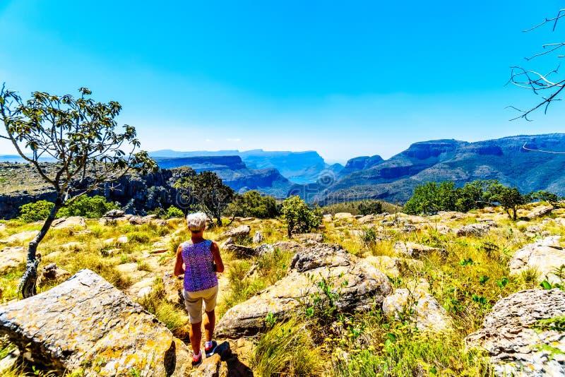 Старшая женщина наслаждаясь взглядом highveld и запруды реки Blyde в каньоне реки Blyde стоковые фотографии rf