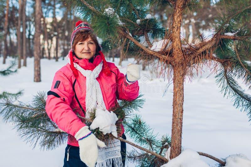 Старшая женщина представляя елью на солнечном зимнем дне в лесе стоковое фото