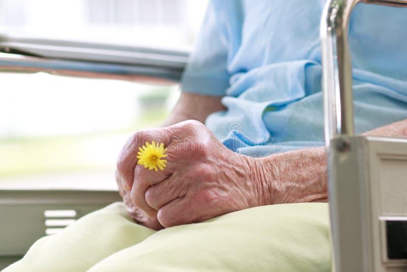 Старшая женщина сидя в кресло-коляске стоковые фото