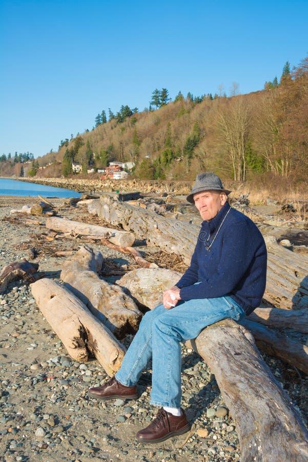 Старшее мужское усаживание на Driftwood пляжа стоковые изображения rf