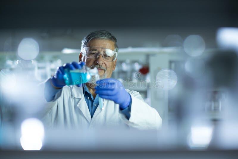 Старшее мыжское научное исследование приведения в исполнение исследователя в лаборатории стоковые фото