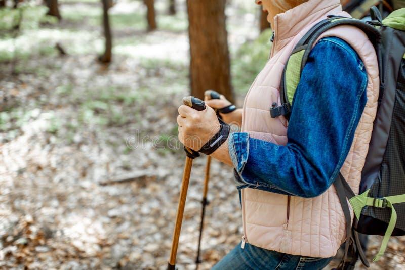 Старшие пары в лесе стоковое изображение rf