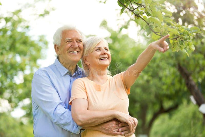Orlando Ukrainian Seniors Singles Dating Online Website