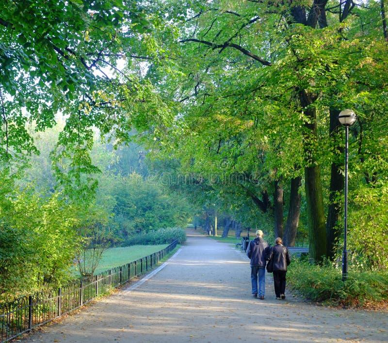 Старшие пары в парке стоковое изображение rf