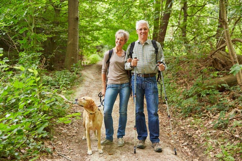 Старшие пары идя в лес стоковые фотографии rf