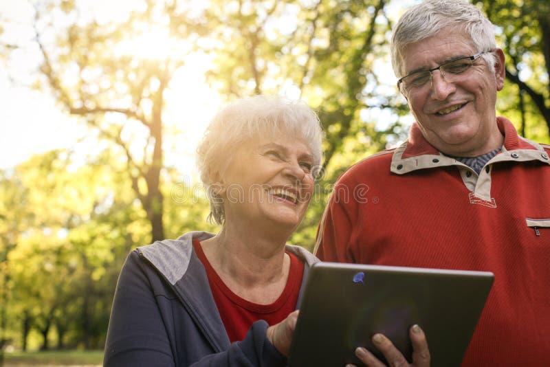 Старшие пары наслаждаясь в парке совместно и используя число стоковая фотография rf