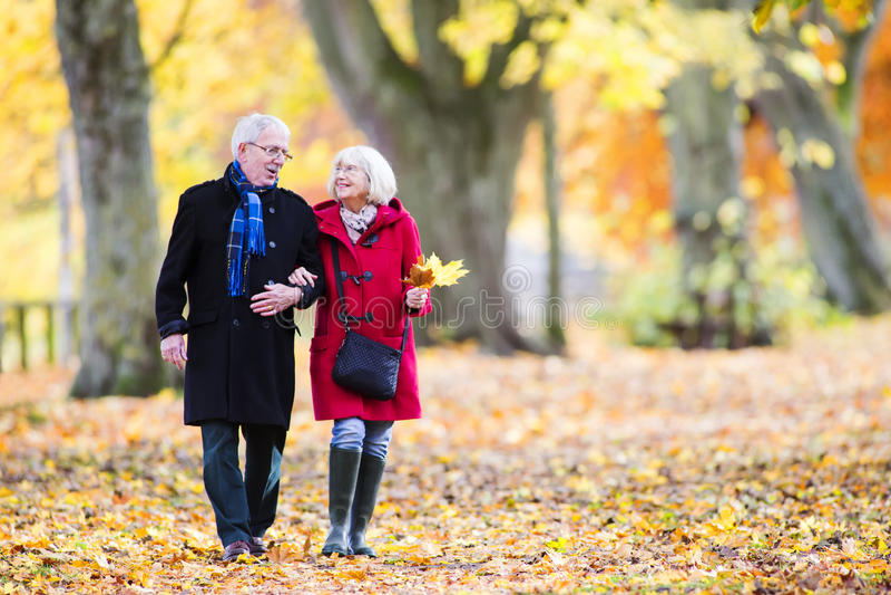 Старшие пары наслаждаясь прогулкой осени стоковое фото rf