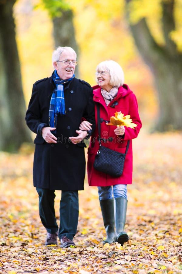 Старшие пары наслаждаясь прогулкой осени стоковые фотографии rf