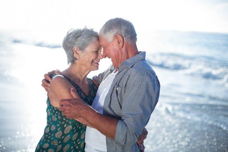 Старшие пары обнимая на пляже стоковое фото rf