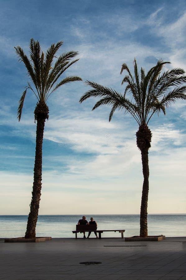 Старшие пары отдыхая на побережье стоковые фото