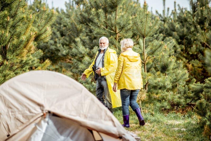 Старшие пары располагаясь лагерем в лесе стоковое фото rf