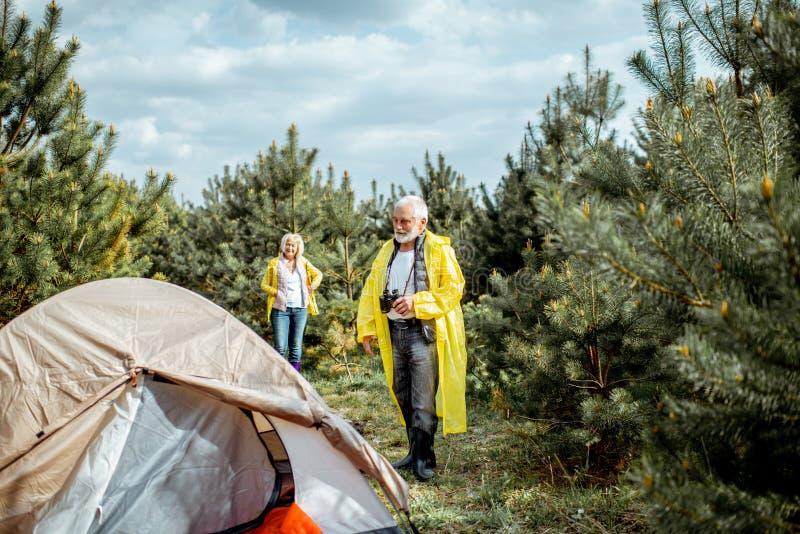 Старшие пары располагаясь лагерем в лесе стоковое фото