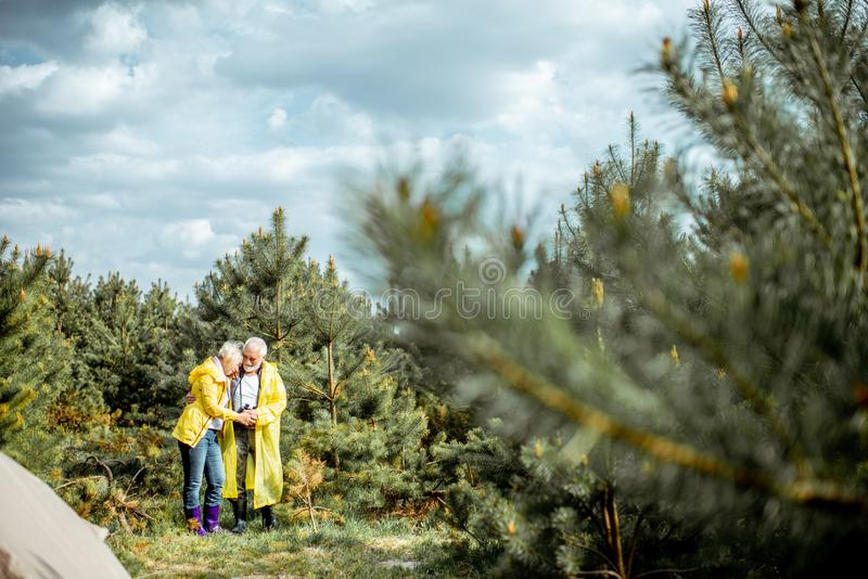 Старшие пары располагаясь лагерем в лесе стоковая фотография