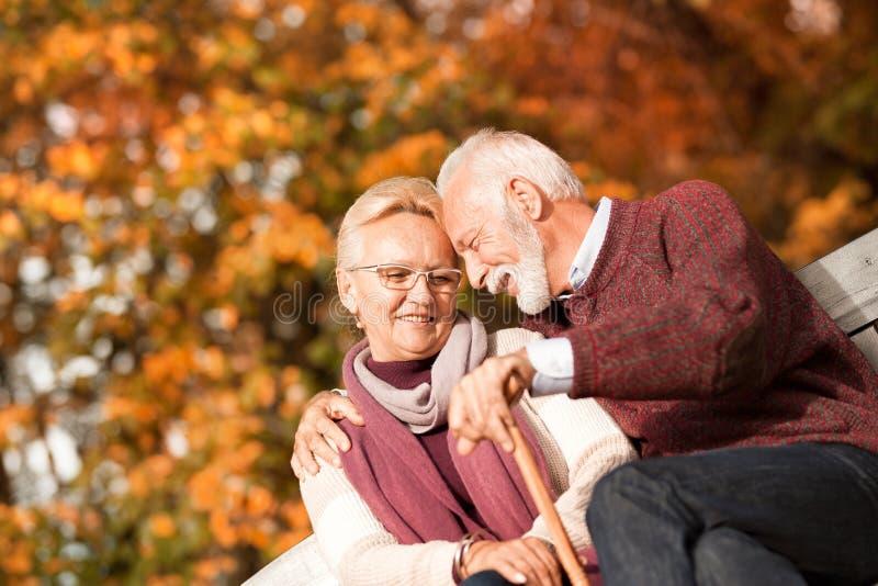 Старшие пары сидя в парке и отдыхать осени стоковые фото