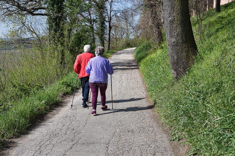 Старшие пары совместно в природе стоковые фото