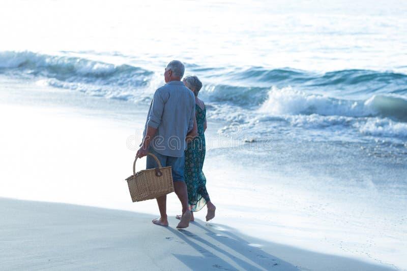 Старшие пары с корзиной пикника стоковые изображения