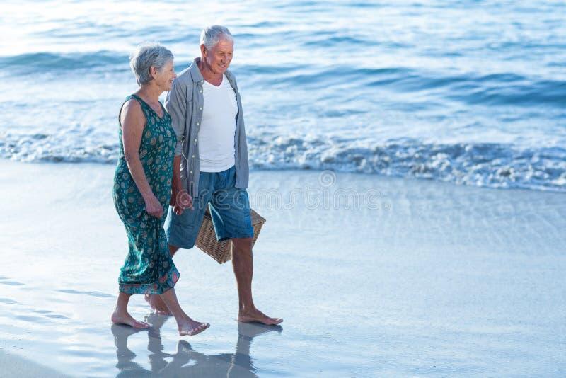 Старшие пары с корзиной пикника стоковые фотографии rf