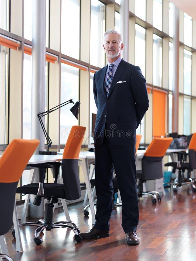 старший портрета бизнесмена стоковое изображение rf
