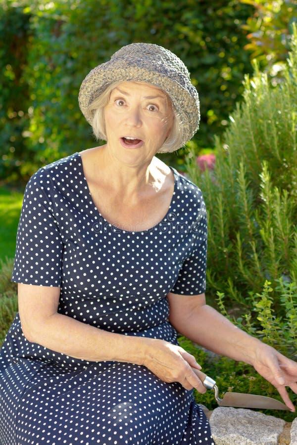 Старший сюрприз насмешки сада женщины стоковое изображение rf