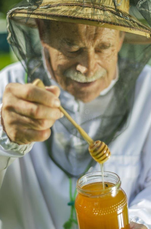 Старший apiarist проверяя его мед в пасеке стоковое изображение