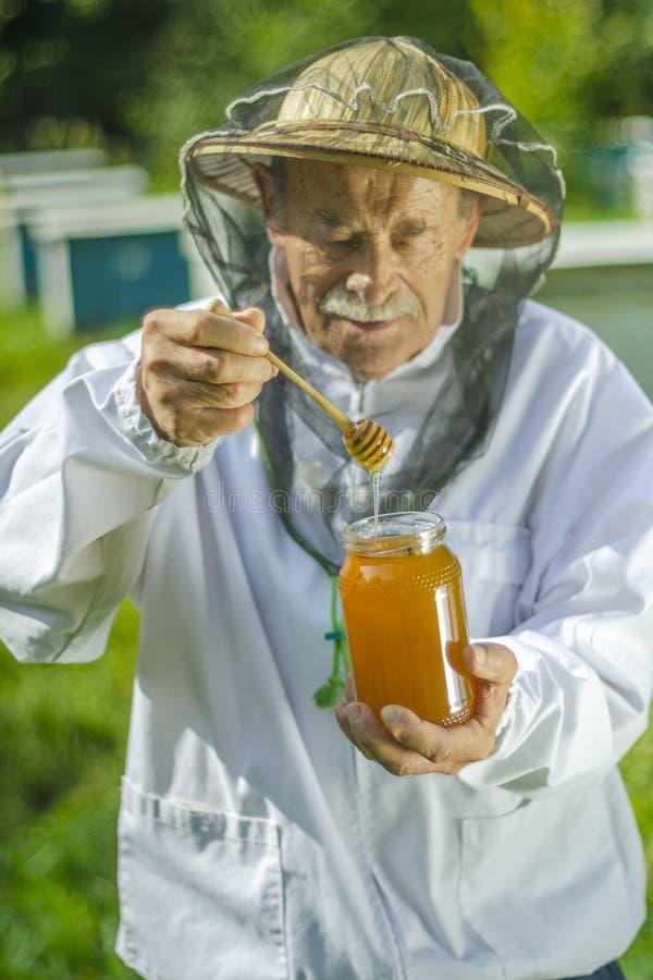 Старший apiarist проверяя его мед в пасеке стоковые изображения