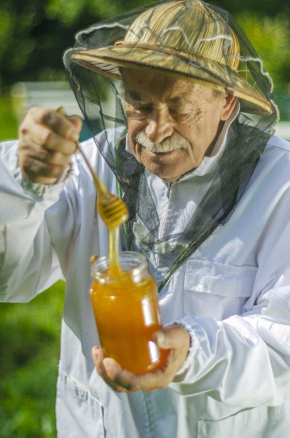 Старший apiarist проверяя его мед в пасеке стоковое фото