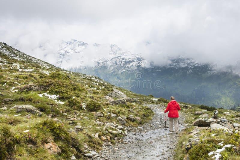 Старший Hiker с красным пальто, Австрией стоковые фотографии rf
