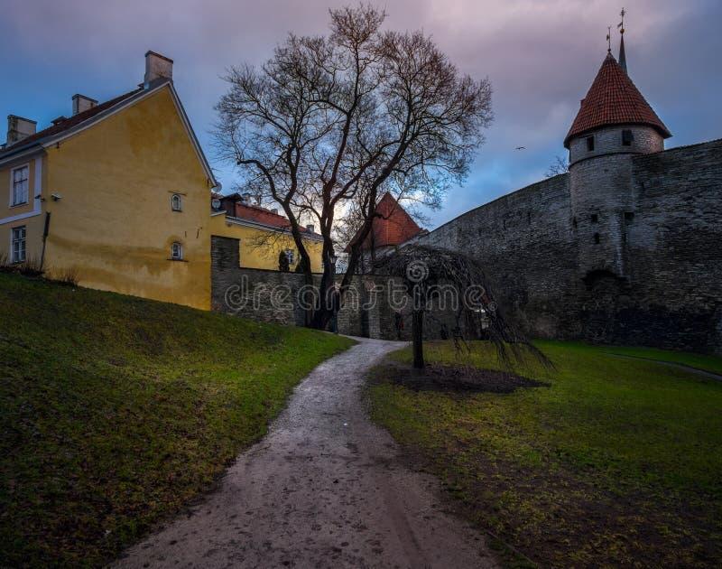 старые башни tallinn эстония стоковое фото