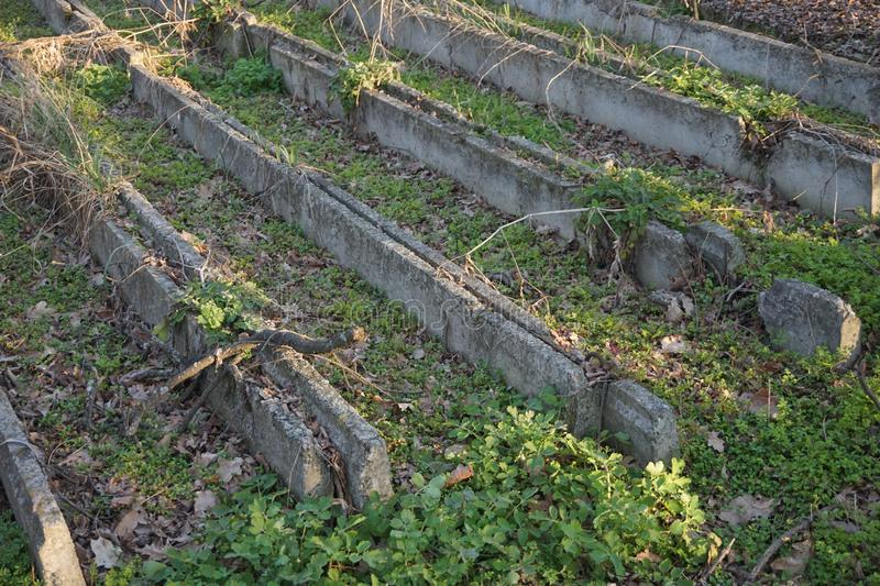 Старые бетонные конструкции через которые трава пускала ростии стоковые фотографии rf