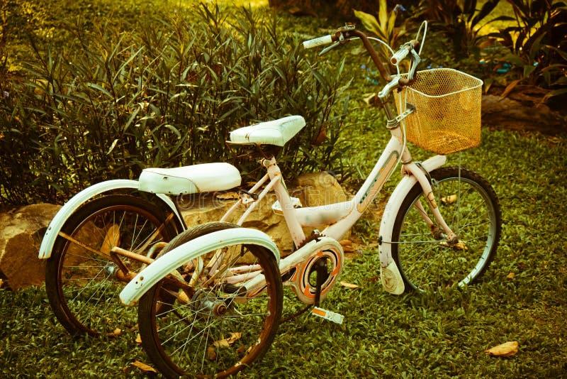 Старые велосипеды стоковые фото