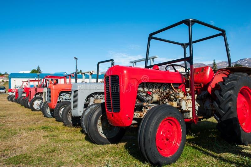 Старые винтажные тракторы на поле стоковое изображение rf