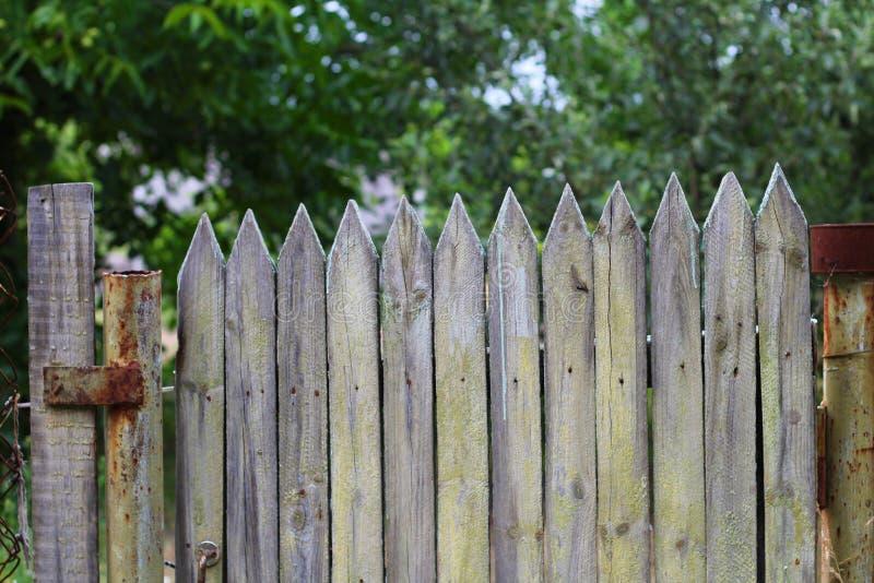 Старые деревянные ворота пикетчика с, который слезли краской стоковая фотография rf