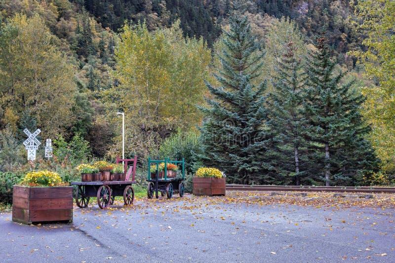 Старые деревянные тележки и красивые цветки и деревья осени железнодорожным переездом стоковое фото rf