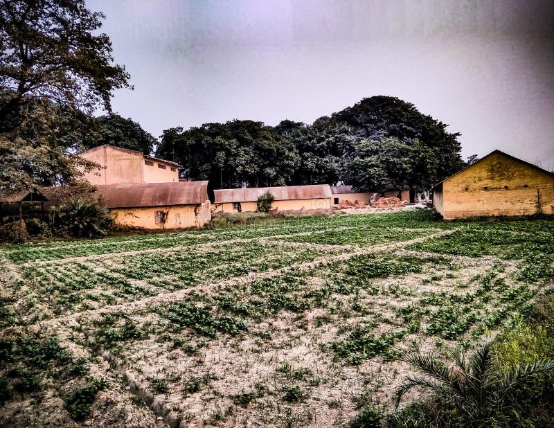 Старые дома вместе с аграрным полем стоковое фото rf
