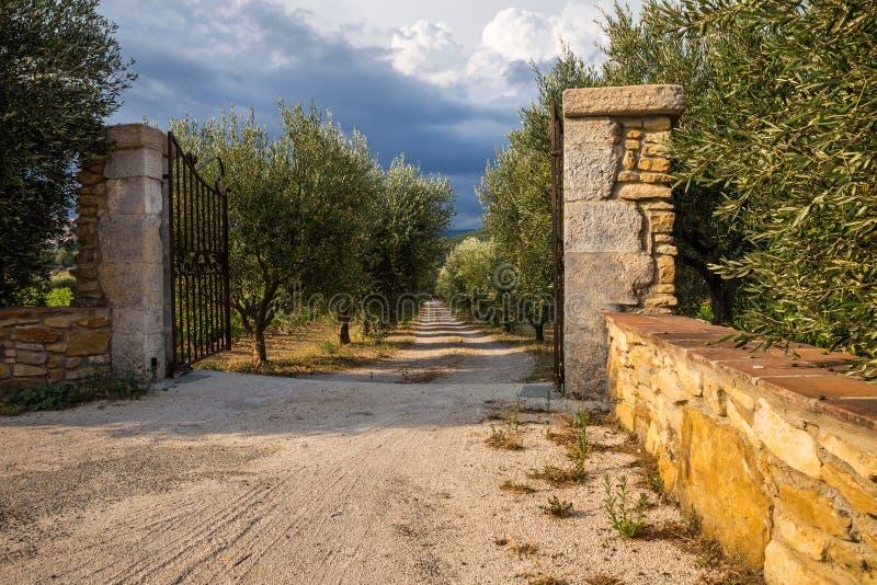 Старые каменные штендеры с чугунными стробами и оливковая роща с грязной улицей стоковое изображение rf
