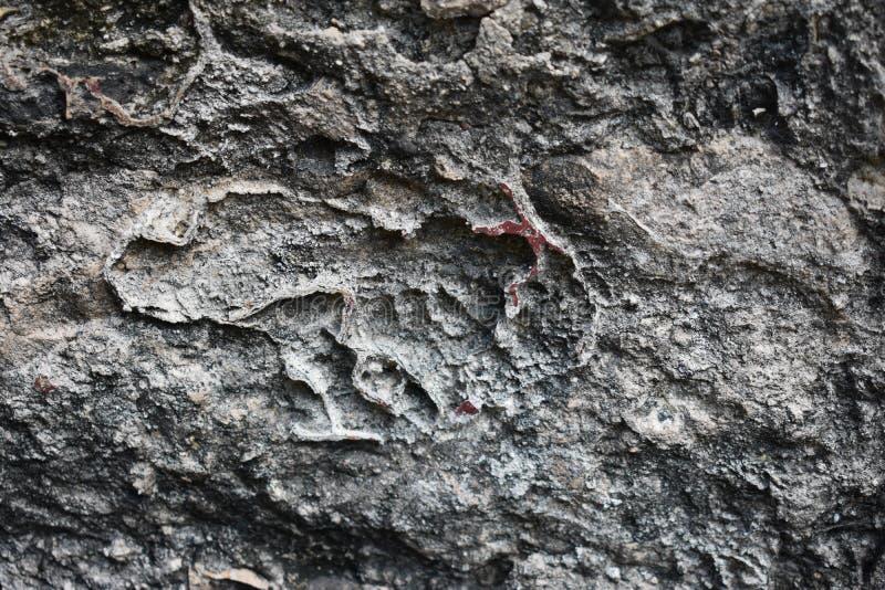 Старые красные обмылки краски, старые майяские руины, Coba Мексика стоковые фотографии rf