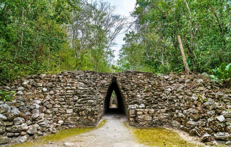 Старые майяские руины на Becan в Мексике стоковое фото