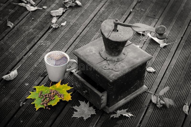 Старые мельницы кофе стоковое изображение rf