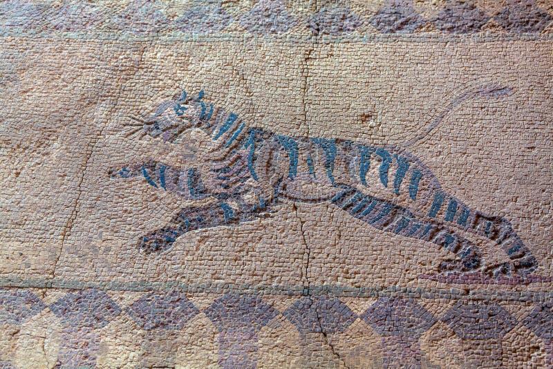Старые мозаики в археологических раскопках, Paphos стоковая фотография