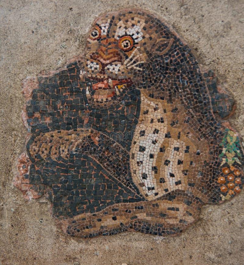 Старые мозаики на археологическом острове Delos стоковая фотография rf