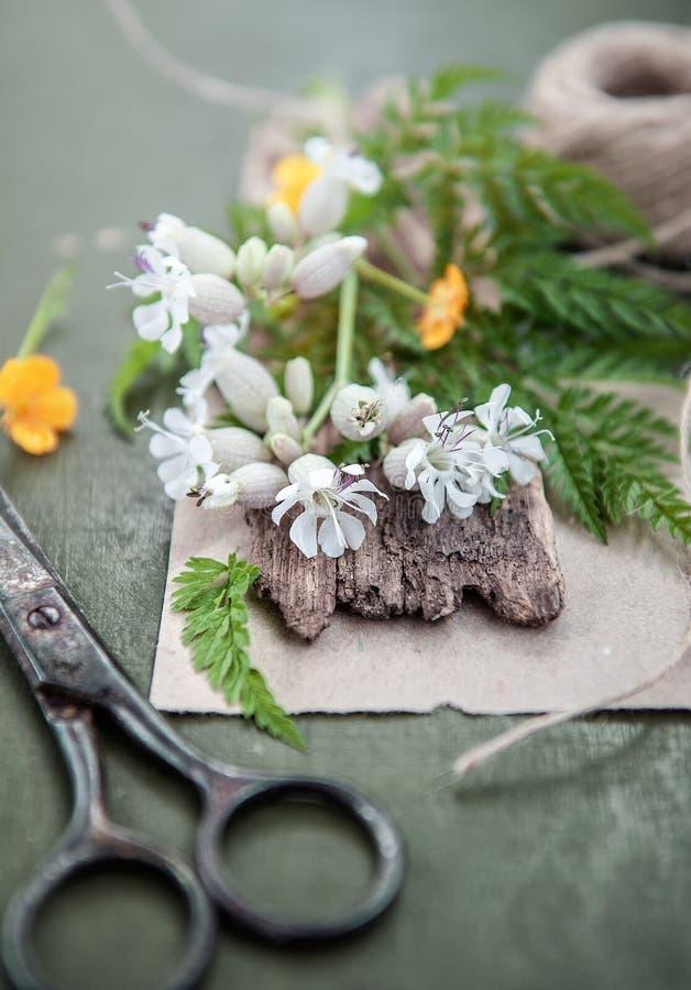 Старые ножницы и цветки портноя на деревянной предпосылке Винтажный загородный стиль стоковая фотография