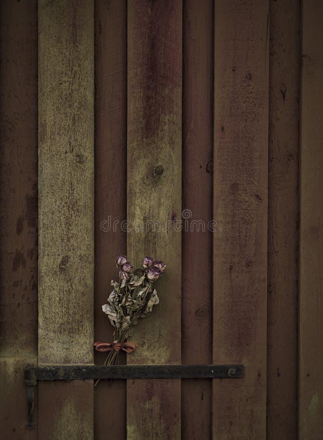 Старые розы на деревянной двери стоковая фотография
