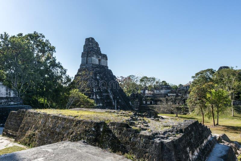 Старые руины виска на Tikal, Гватемале стоковая фотография